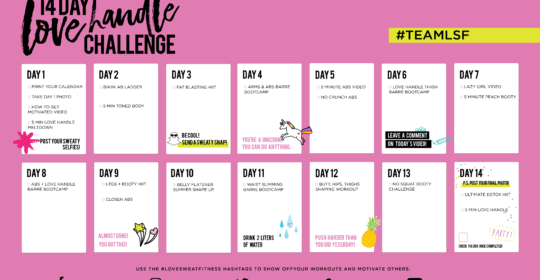 free 14 Day Love Handle Challenge calendar
